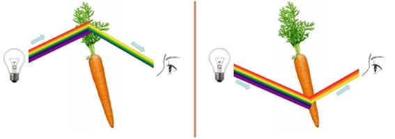 color_objetos