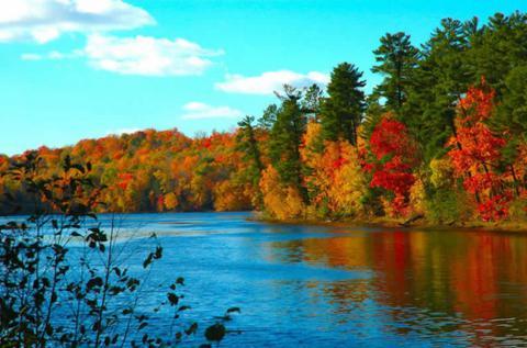 colores hojas arboles otoño triplenlace.com