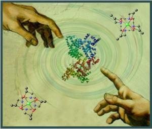 fórmula química cuerpo humano triplenlace.com