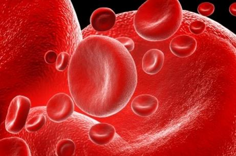 Glóbulo rojo